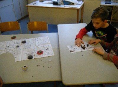 Erforschung von Regenwürmern