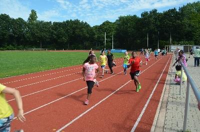 Sportfest 2015